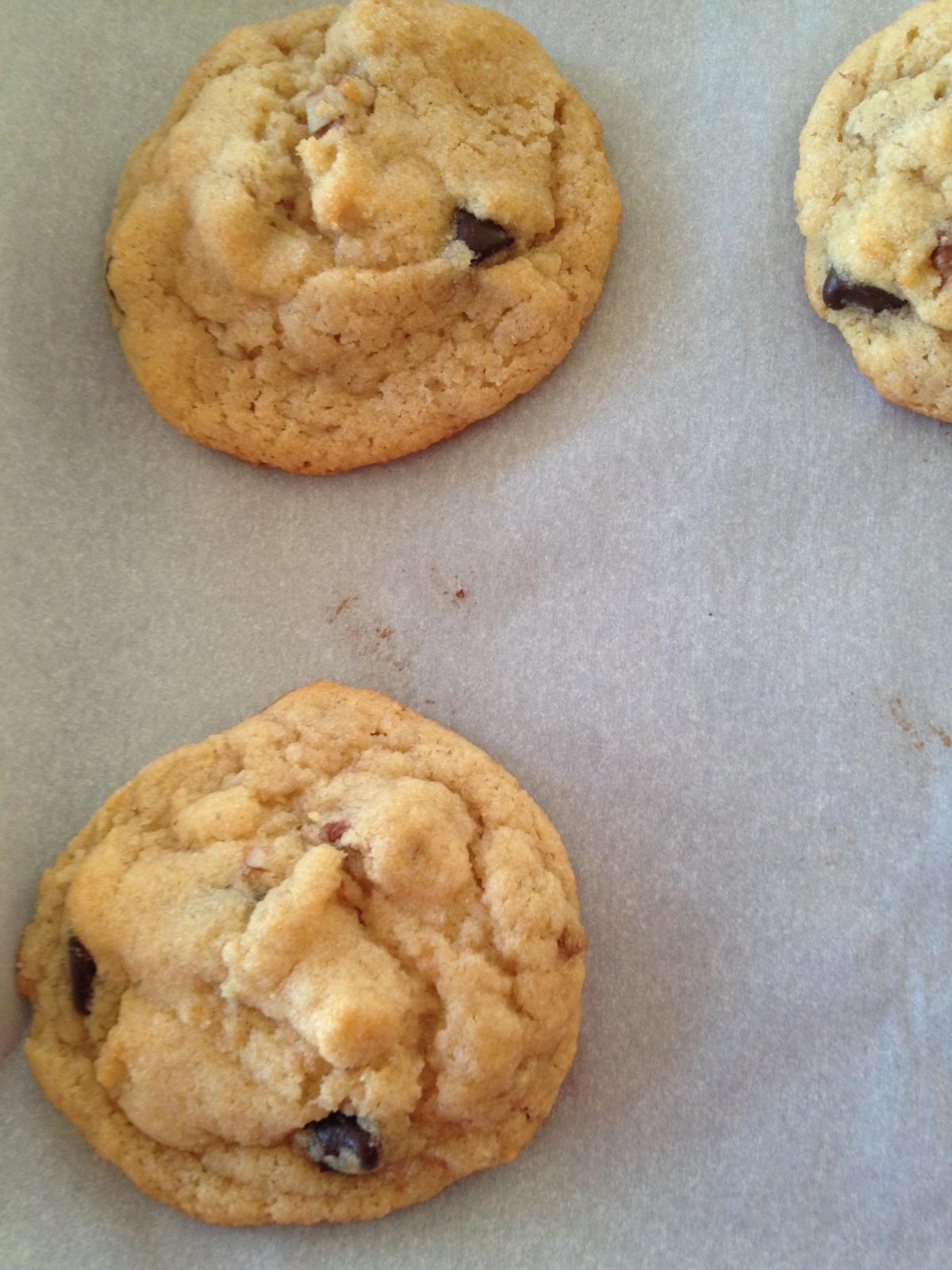 Coconut Flour Vegan Chocolate ChipCookies